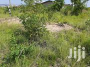 One Accre of Land for Sale at Sasabi, Adenta to Dodowa Road | Land & Plots For Sale for sale in Greater Accra, Adenta Municipal