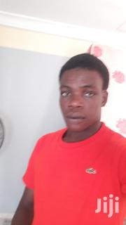 I Am A Hardworking Person | Other CVs for sale in Volta Region, Ketu South Municipal