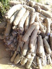 Different Types Of Yams | Feeds, Supplements & Seeds for sale in Volta Region, Nkwanta North