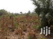Affordable Land for Sale at Akuapem Mountains | Land & Plots For Sale for sale in Greater Accra, Achimota
