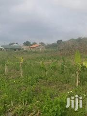 Land At Kasoa Papasi For Sale | Land & Plots For Sale for sale in Central Region, Awutu-Senya