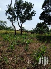 Land Forsale | Land & Plots For Sale for sale in Eastern Region, New-Juaben Municipal