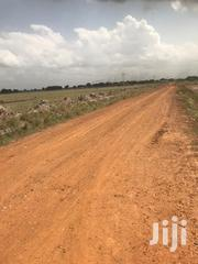 Free Document Estate Lands for Sale | Land & Plots For Sale for sale in Greater Accra, Tema Metropolitan