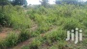 Plot of Land for Sale a Kasoa Ofankor. My Personal No Litigation. | Land & Plots For Sale for sale in Central Region, Awutu-Senya