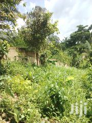 70 Acres of Farmland at Akroso | Land & Plots For Sale for sale in Greater Accra, Ga West Municipal