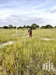 Plot Of Land At Afienya For Sale   Land & Plots For Sale for sale in Greater Accra, Tema Metropolitan