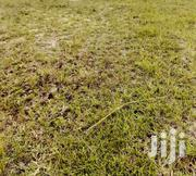 Lands In Tsopoli For Sale | Land & Plots For Sale for sale in Greater Accra, Tema Metropolitan