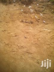 1/Half Plot of Land for Sale at Tseaddo(La | Land & Plots For Sale for sale in Greater Accra, Ga South Municipal