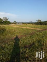A Real Estate Company Is Selling Gated Community Lands   Land & Plots For Sale for sale in Greater Accra, Ga West Municipal