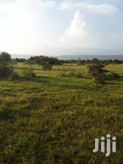 Lands In Shai Hills For Sale | Land & Plots For Sale for sale in Greater Accra, Ga West Municipal