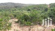 A Parcel Of Land For Sale At Mpinstin | Land & Plots For Sale for sale in Western Region, Ahanta West