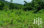 Land for Sale at Kokonru - Aburi | Land & Plots For Sale for sale in Eastern Region, Akuapim South Municipal