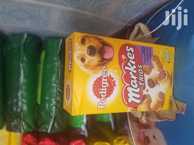 Treat for Your Dog