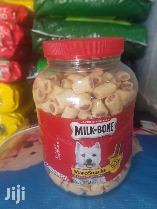 Treat For Your Pet