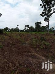 FOR LEASE  500 Acres Farmland With A Stream In EJURA, ASHANTI REGION | Land & Plots For Sale for sale in Ashanti, Ejura/Sekyedumase