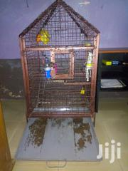 Big Parrots Cage | Pet's Accessories for sale in Ashanti, Kumasi Metropolitan