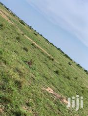 Amazing Plots!! Airport City (Prampram Lands Sale)   Land & Plots For Sale for sale in Greater Accra, Ashaiman Municipal