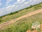 Afienya Lands For Sale   Land & Plots For Sale for sale in Greater Accra, Ashaiman Municipal