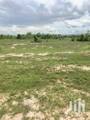 Lands At Afienya For Sale   Land & Plots For Sale for sale in Greater Accra, Ashaiman Municipal