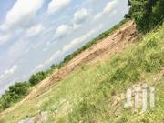 Well-Planned Estate; Afienya Lands   Land & Plots For Sale for sale in Greater Accra, Ashaiman Municipal