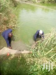 Learn Fish Farming | Classes & Courses for sale in Ashanti, Kumasi Metropolitan