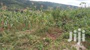 Eight Plots Of Land At Peduase For Sale | Land & Plots For Sale for sale in Eastern Region, Akuapim South Municipal