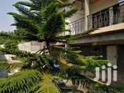 A Separate Two Bedroom Apartment on the Same Compound for Sale. | Houses & Apartments For Sale for sale in Greater Accra, Ga West Municipal