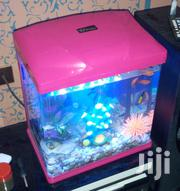 Beautiful Aquarium | Pet's Accessories for sale in Greater Accra, Nii Boi Town