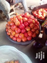 Tomatos From Farm For Sale | Feeds, Supplements & Seeds for sale in Eastern Region, Suhum/Kraboa/Coaltar