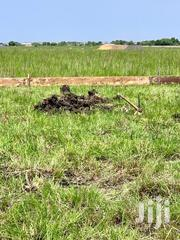 Tsopoli Land For Sale   Land & Plots For Sale for sale in Greater Accra, Ashaiman Municipal
