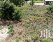Land For Sale At Nanakrom, Ashaley Botwe   Land & Plots For Sale for sale in Greater Accra, Adenta Municipal
