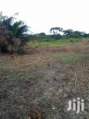 Land Off Nkawie Road For Sale | Land & Plots For Sale for sale in Ashanti, Atwima Nwabiagya