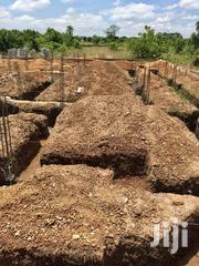 Afienya-dodowa Plots For Sale 100x70sqft   Land & Plots For Sale for sale in Greater Accra, Ashaiman Municipal