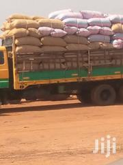 Grain Supply | Feeds, Supplements & Seeds for sale in Northern Region, Tamale Municipal