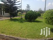 City Gardens And More | Landscaping & Gardening Services for sale in Greater Accra, East Legon