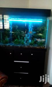 Aquarium For Sale | Fish for sale in Greater Accra, Teshie-Nungua Estates