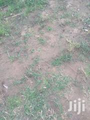Serviced Plots Of Land In Trassaco   Land & Plots For Sale for sale in Greater Accra, East Legon