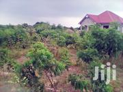 Executive Land At Afienya Right On The Afienya-dodowa Road | Land & Plots For Sale for sale in Greater Accra, Nungua East