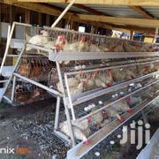 Chicken Cages | Pet's Accessories for sale in Greater Accra, Odorkor