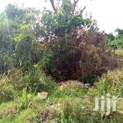 A Plot of Land for Any Purpose, Kubease | Land & Plots For Sale for sale in Ashanti, Kumasi Metropolitan