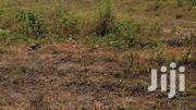 A Registered 1 Plot of Land for Sale | Land & Plots For Sale for sale in Central Region, Awutu-Senya