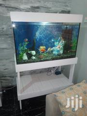 Aquarium And Fishes | Pet Services for sale in Greater Accra, Ashaiman Municipal