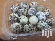 Organically Fresh And Wholesome Quails Eggs | Livestock & Poultry for sale in Ashanti, Atwima Kwanwoma