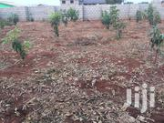 Rigistered Land at Tema | Land & Plots For Sale for sale in Central Region, Awutu-Senya
