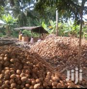 Coconut Shell Charcoal | Feeds, Supplements & Seeds for sale in Western Region, Nzema East Prestea-Huni Valley