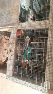 Housing  For Pets   Pet's Accessories for sale in Greater Accra, Adenta Municipal