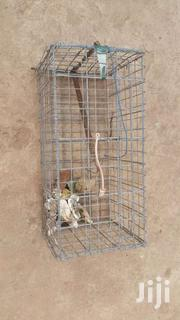 Live Cage | Pet's Accessories for sale in Greater Accra, Adenta Municipal