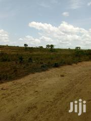 Estate Land For Sale At Kasoa, Amasaman And Nsawam | Land & Plots For Sale for sale in Greater Accra, Nii Boi Town