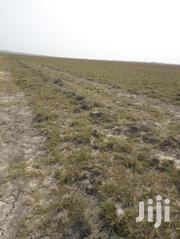 Buy Lands And Wait From Kings City Real Estate At Tsopoli   Land & Plots For Sale for sale in Greater Accra, Tema Metropolitan