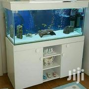 Fish Aquarium Manufacturer | Manufacturing Services for sale in Greater Accra, Adenta Municipal
